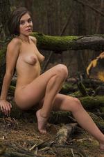 Dakota Naked In The Dark Forest 12