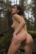 Dakota Naked In The Dark Forest 15