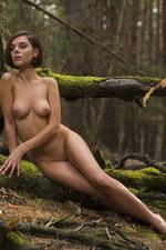 Dakota Naked In The Dark Forest 16