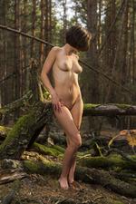 Dakota Naked In The Dark Forest 17