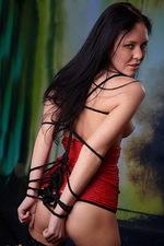 Bondage pleasures 10